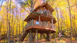 Mega Treehouses Line Vermont's Route 100