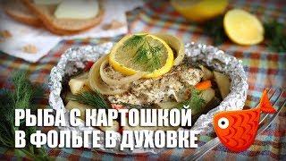 Рыба с картошкой в фольге в духовке — видео рецепт