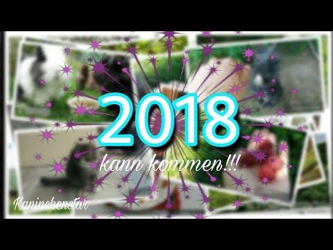 Geht es 2018 weiter?! 🐾🌸 Das Jahr 2017 🐇🌈 | Kaninchenstar