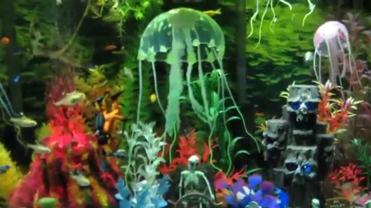 Fish tank toys - Freshwater Fish Tank Penn Plax Action Air Toys 2014 11 13