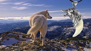 Что представляет собой амулет волка
