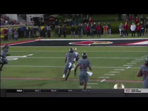 Seminole Moment: Dalvin Cook's 40-yard TD Run vs.  Louisville (2014)