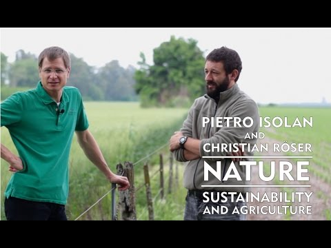 Nature - Susteinability and Agriculture in Argentina TRAILER
