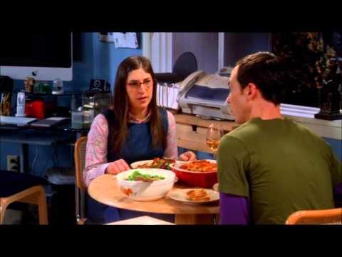 Big Bang Theory - Undivided attention
