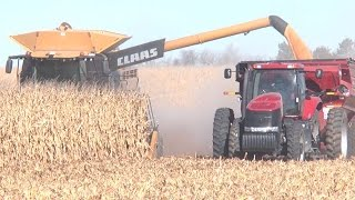 Neighbors Help Injured Farmer with Harvest Near St.Libory