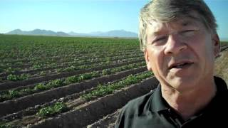 Saik's AgriTreks: Agriculture in Arizona... Just Add Water