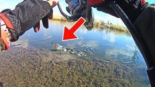 ЩУКИ сошли С УМА Рыбалка весной со спиннингом на канале