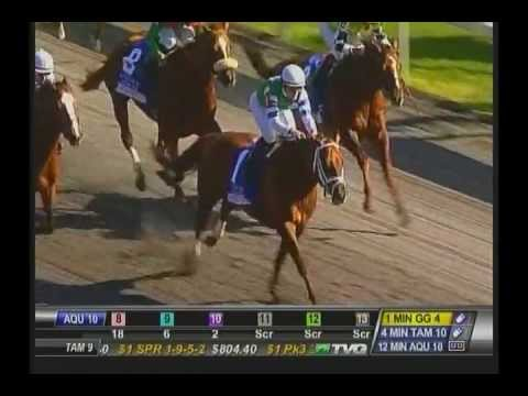 2013 Coolmore Lexington Stakes - Winning Cause