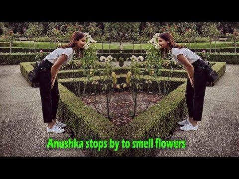 Anushka Sharma looks like a breath of fresh air in latest picture Mp3