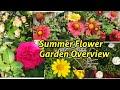Summer Flower Garden Overview @LEARNING GARDENING WITH MJ