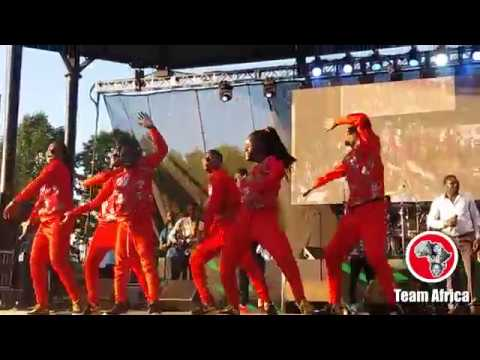 Eddy Kenzo and Triplets Ghetto Kids at Afrofest 2018 thumbnail