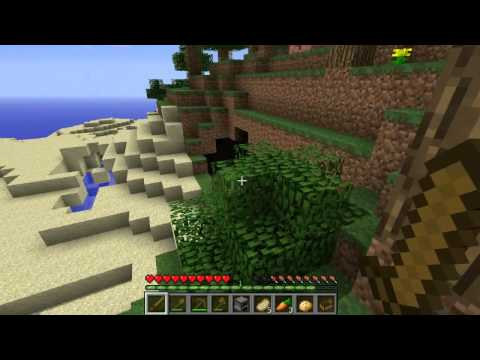 Видео из игры Майнкрафт