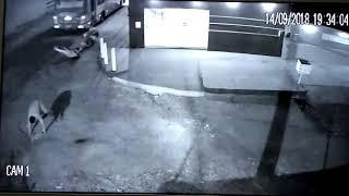 Passageiros pulam de ônibus em movimento durante assalto; veja o vídeo