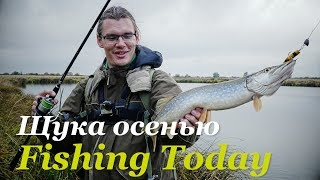 fishing australia trout cod