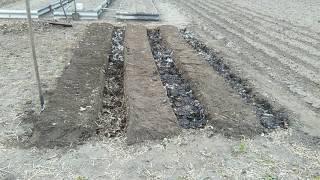 як зробити вузькі грядки на городі