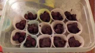 How To Make Chocolate Covered Macadamia Nuts