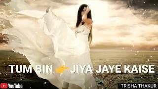 Tum Bin Jiya | Jaye Kaise | Female | Sad | WhatsApp Status Video | 30 Sec | Lyrics