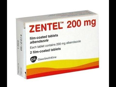 Zentel Review