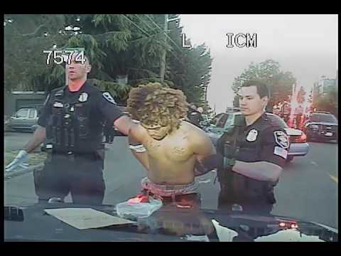 Seattle Police chase, canine released