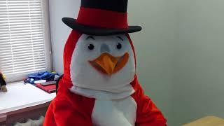 Анонс. RED Пингвин Stream