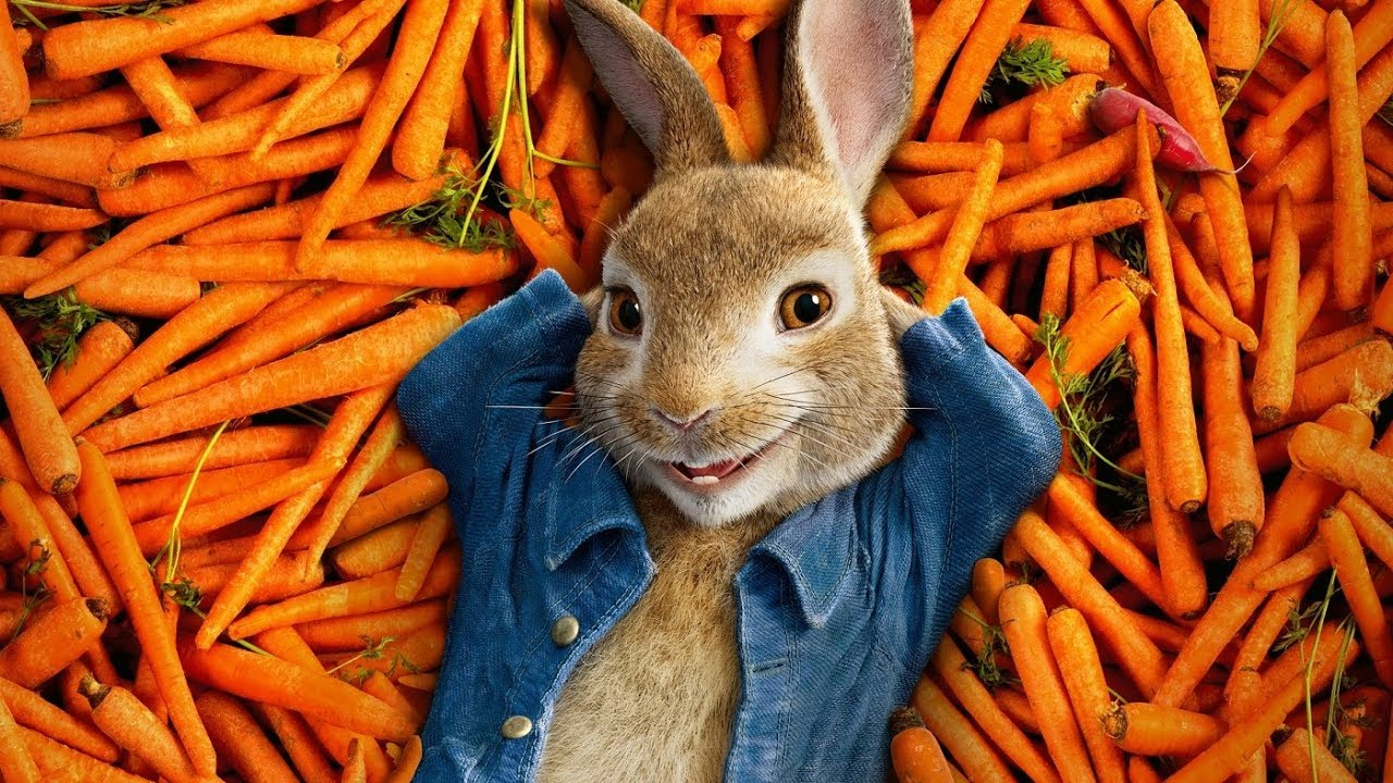 PETER RABBIT MOVIE 2018 Watch how to draw