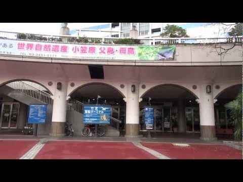 竹芝 客船 ターミナル 2012年12月31日です by picua