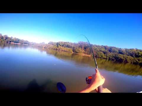 Fishing in lane cove river