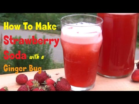 Strawberry Soda Recipe - Naturally Fizzy With Ginger Bug!