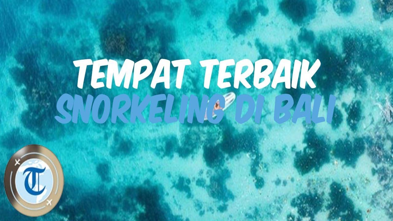 6 Tempat Wisata Di Bali Dengan Pemandangan Bawah Laut Memukau Untuk Snorkeling Dan Diving