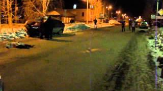 В Серове водитель Ford Focus насмерть сбил на пешеходе женщину с собакой/serovglobus.ru