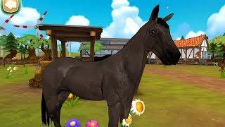 Horse Hotel 🐎 Juego de caballos para niños gratis