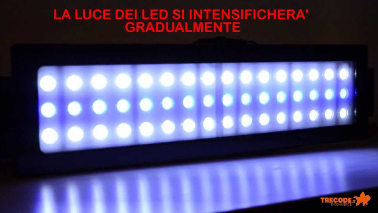 Plafoniera a led per acquario ledsystem per acquari d 39 a for Plafoniera led acquario