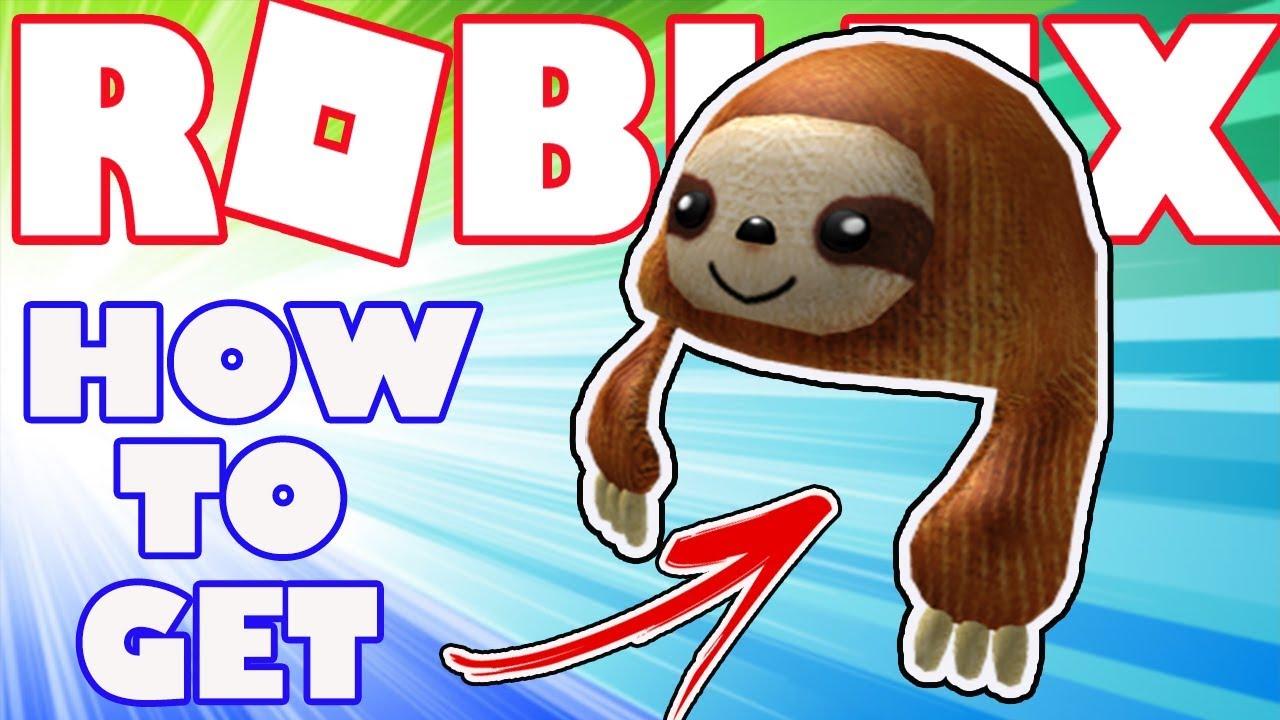 Bonus Item How To Get The Sloth Buddy Hat In Roblox Bonus