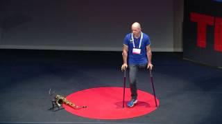 Montagna invalicabile o Inaspettata Opportunità?   Andrea Devicenzi   TEDxPadova