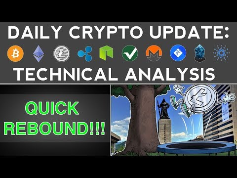 CRYPTOS REBOUND QUICKLY! WHAT'S NEXT? (12/10/17) Daily Update + Technical Analysis