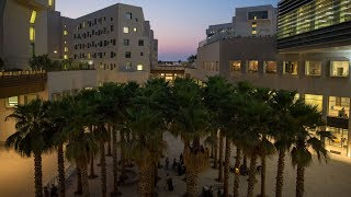NYU Abu Dhabi Campus Tour