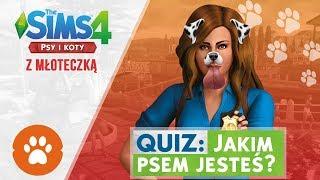 QUIZ: JAKIM PSEM JESTEŚ? - The Sims 4 Psy i Koty z MŁOTECZKĄ