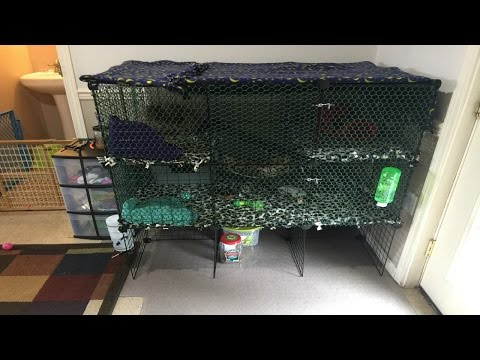 Building A Diy Ferret Cage Youtube