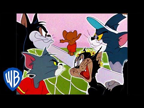 Tom & Jerry | Tom vs. Butch! | Classic Cartoon Compilation | WB Kids thumbnail