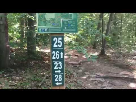 Riley Trails Hike in Ottawa County, Michigan near Holland.