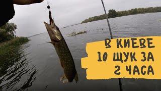 Рыбалка в Киеве  За 2 часа 10 щук