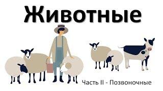 10.2 Животные часть II  (5 класс) - введение в Биологию