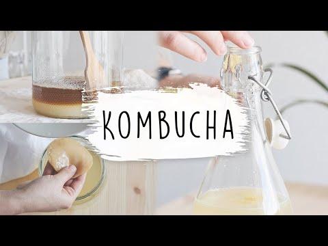 el-arte-de-hacer-kombucha