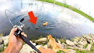 CRAZY night Bank Fishing a Pond!!!