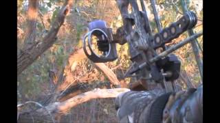 Hunting with Cliff Mays