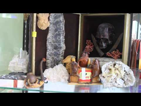 Oddities and antiques on Divisadero Street