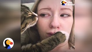 Awkward Cat Keeps Trying To Kiss His Mom | The Dodo