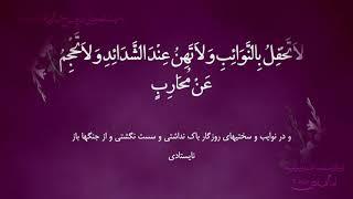 الزيارة الغديرية | الإمام الهادي (ع) يزور أمير المؤمنين (ع) بعبارات جليلة عظيمة | القارئ مهدي النجفي