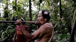 La lucha de los guerreros wao contra petroleras en la Amazonía