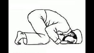 Learn How to Pray (Salaat) Namaz